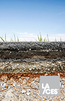 Planting Soils for Landscape Architectural Projects Thumbnail